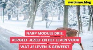 hert in de sneeuw voor narcisme.blog
