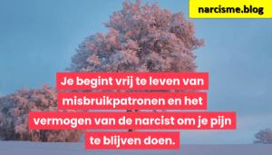 boom in de sneeuw voor narcisme.blog