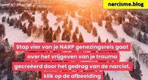dennebomen in de sneeuw voor narcisme.blog