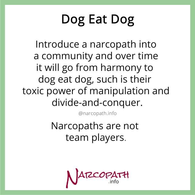 Dog-eat-Dog in the NPD world
