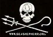 Links - Sea Shepherd