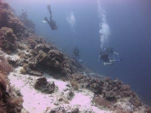 Diving Africa - Zanzibar