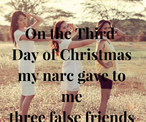 on-the-third-day-of-christmasmy-narc-gave-to-methree-false-friends