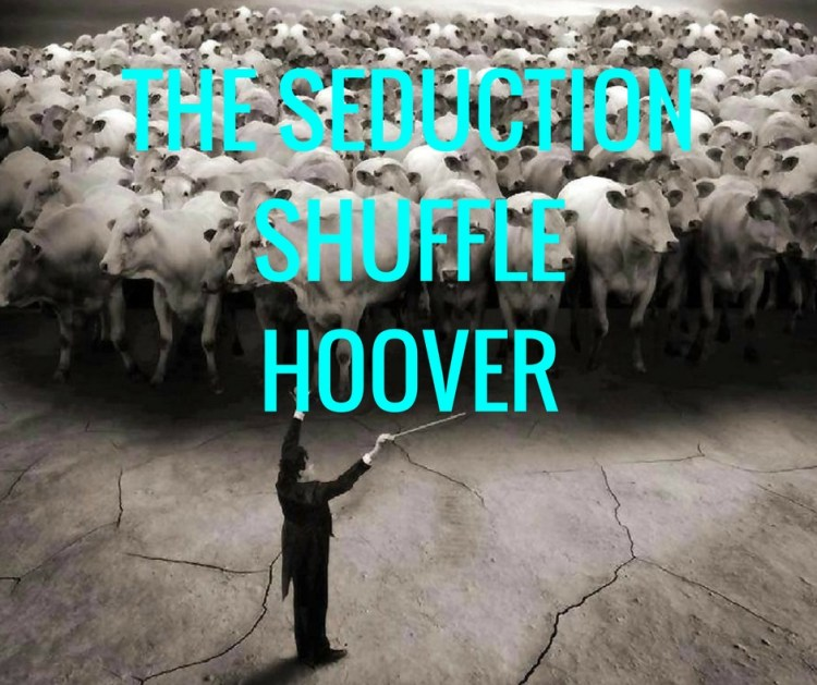 THE SEDUCTIONSHUFFLEHOOVER