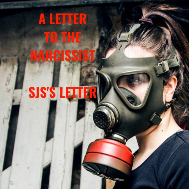 A LETTERTO THENARCISSISTSJS'S LETTER
