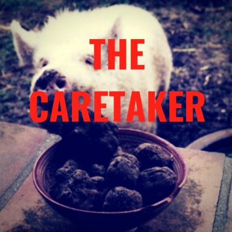 THECARETAKER