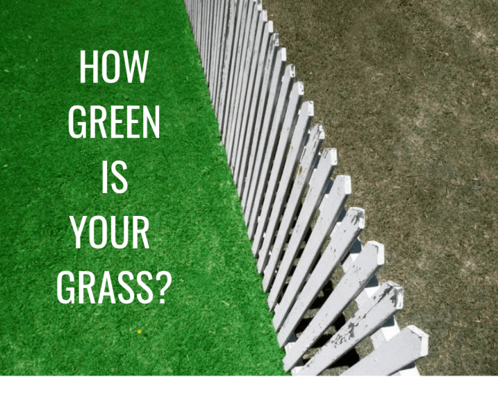 HOW GREEN IS YOUR GRASS_.png