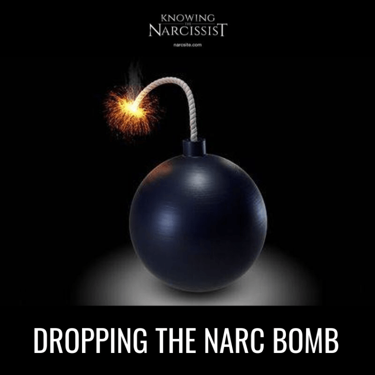 DROPPING THE NARC BOMB