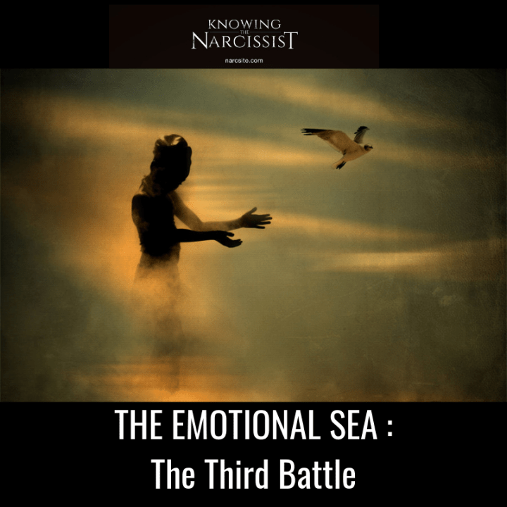 THE EMOTIONAL SEA _ The Third Battle