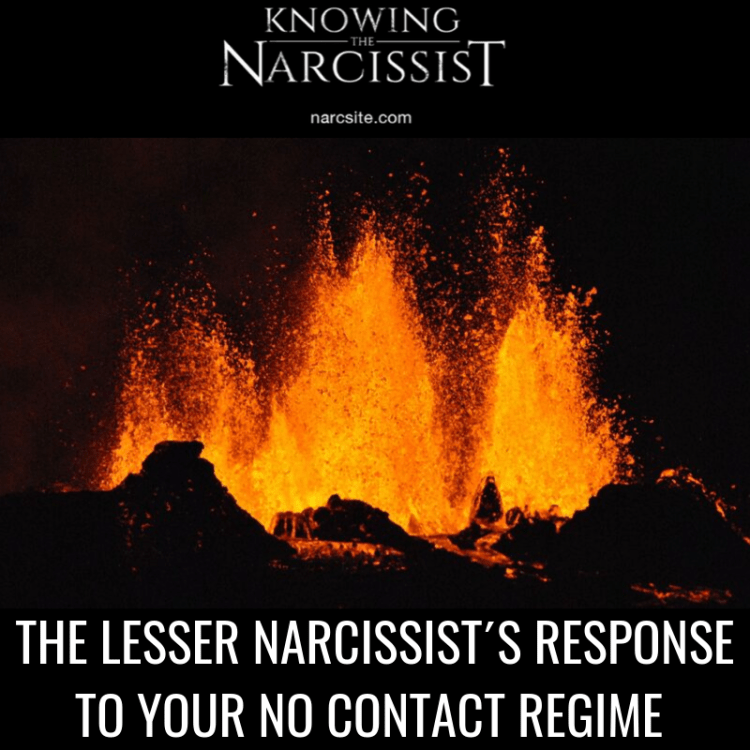 THE LESSER NARCISSIST´S RESPONSE TO YOUR NO CONTACT REGIME