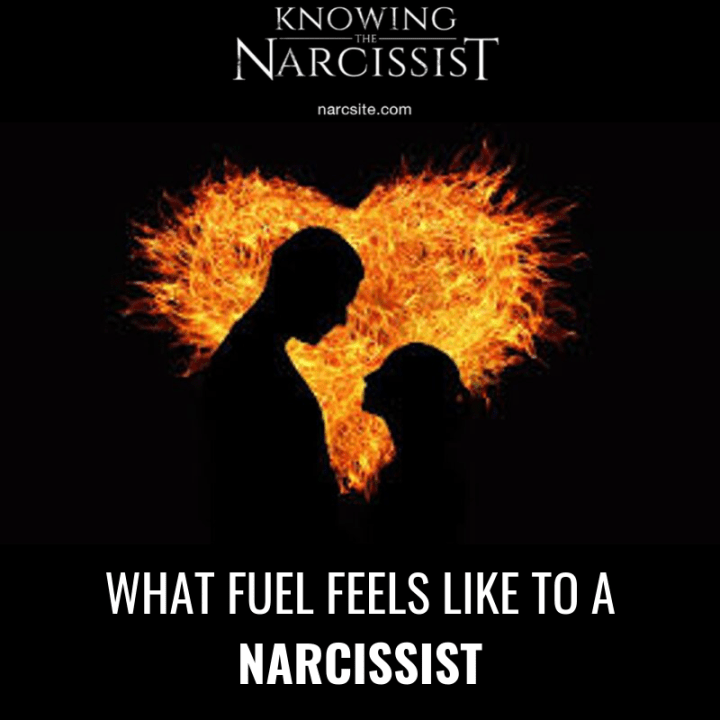 WHAT FUEL FEELS LIKE TO A NARCISSIST