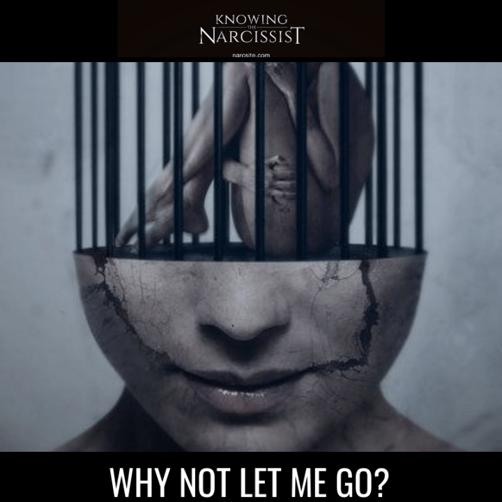 WHY NOT LET ME GO?