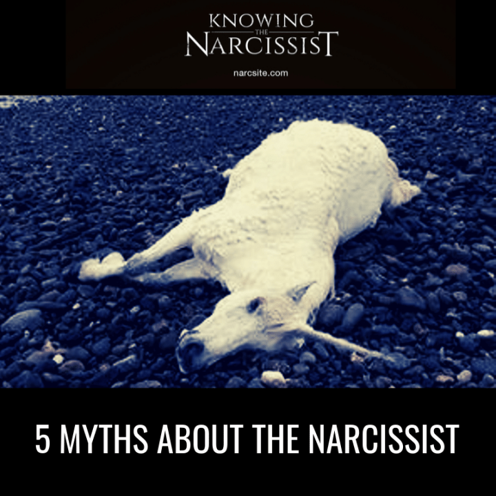 5 MYTHS ABOUT THE NARCISSIST