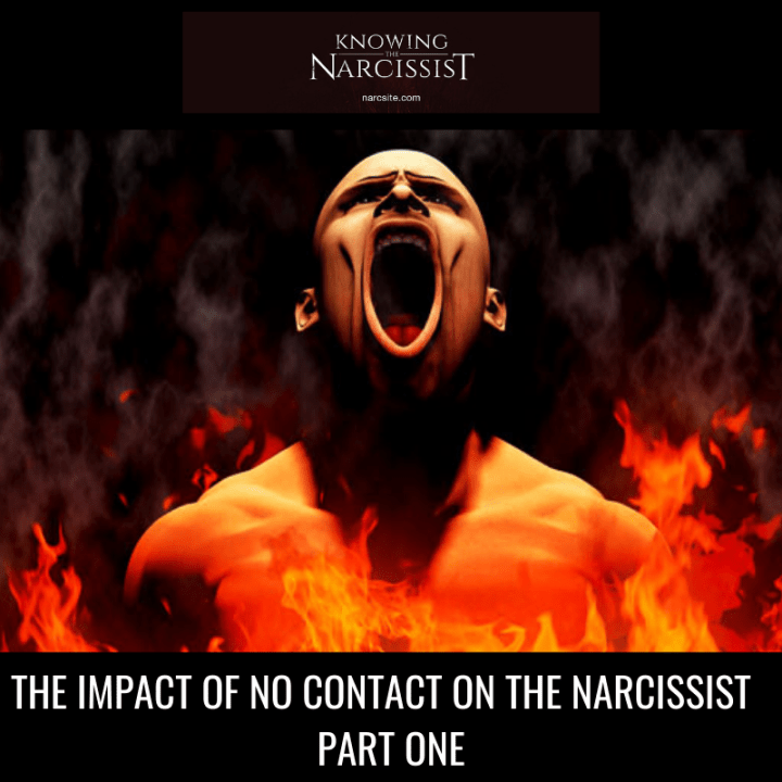 THE IMPACT OF NO CONTACT ON THE NARCISSIST PART ONE