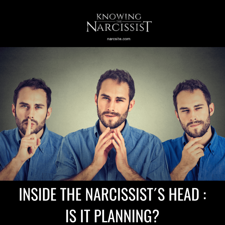 INSIDE THE NARCISSIST´S HEAD _ IS IT PLANNING?