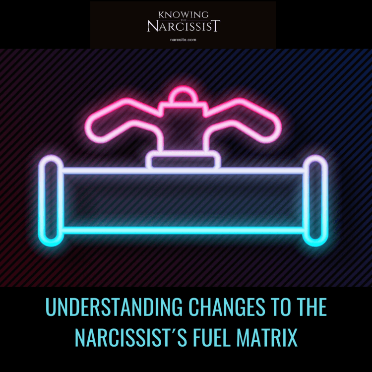 UNDERSTANDING CHANGES TO THE NARCISSIST´S FUEL MATRIX