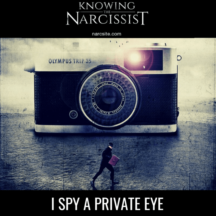 I-SPY-A-PRIVATE-EYE