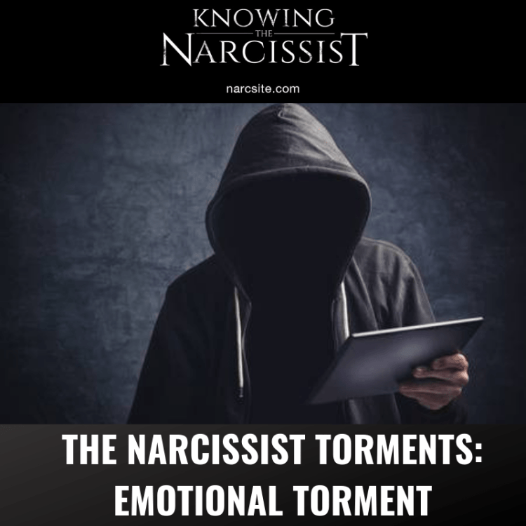 THE-NARCISSIST-TORMENTS
