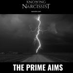 prime aims