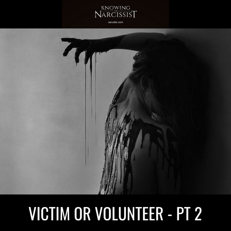 VICTIM-OR-VOLUNTEER-PT-2