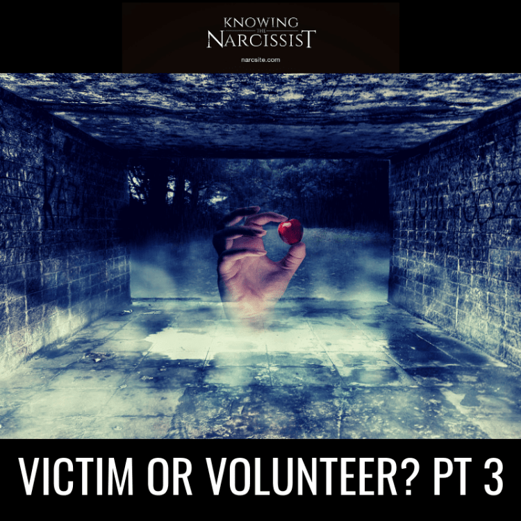 VICTIM-OR-VOLUNTEER-PT-3