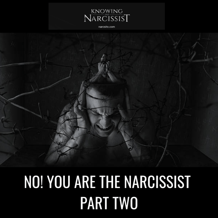 NO-YOU-ARE-THE-NARCISSIST-PART-TWO