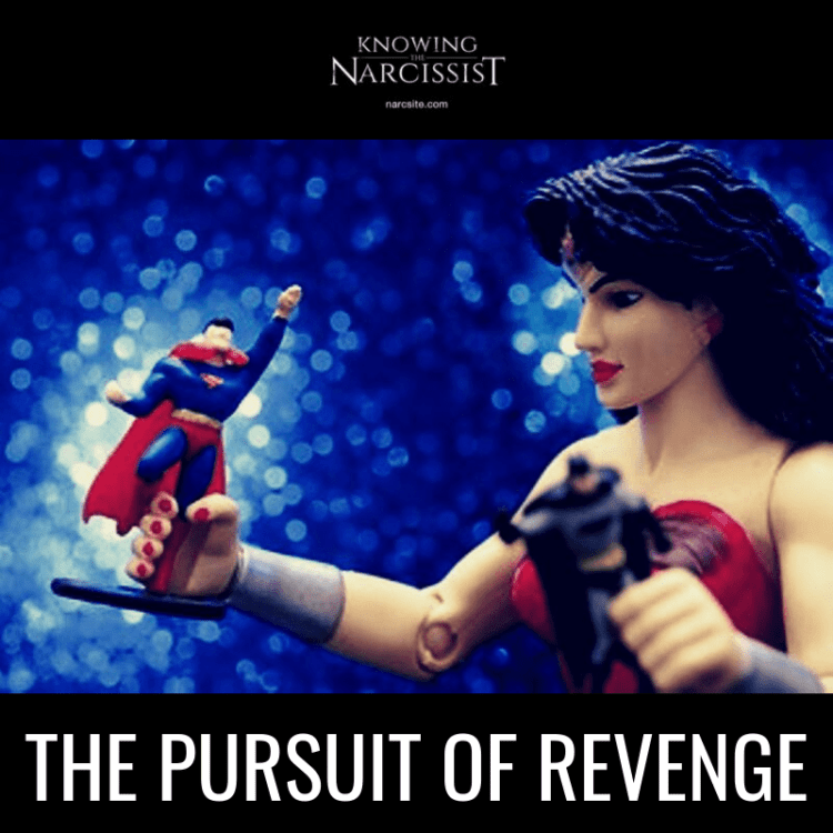 THE-PURSUIT-OF-REVENGE