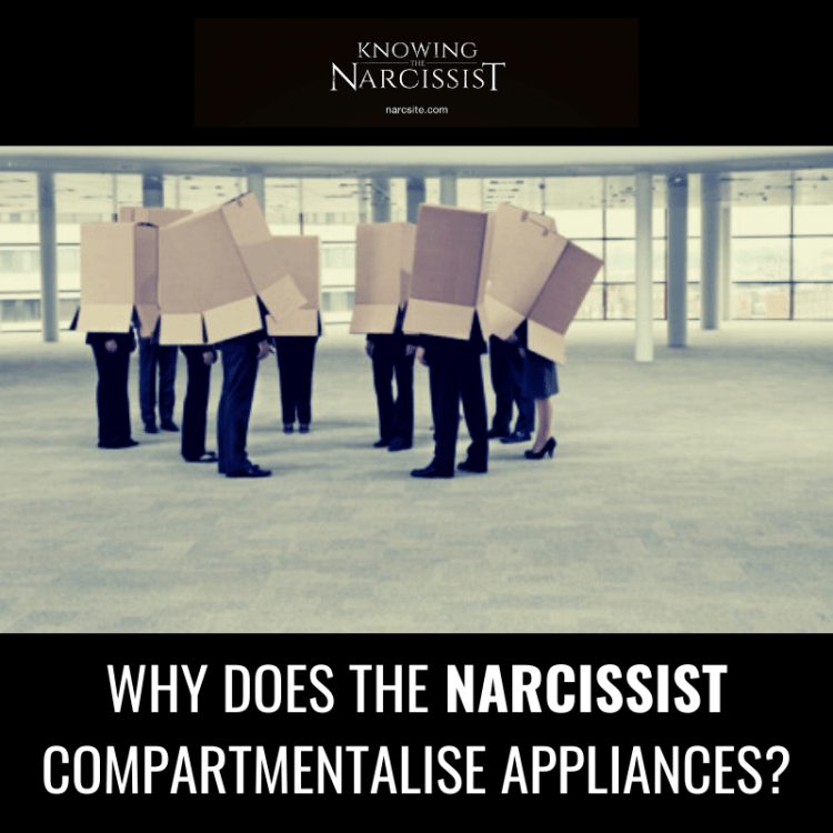 WHY-DOES-THE-NARCISSIST-COMPARTMENTALISE-APPLIANCES