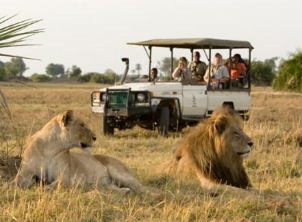 safari_kenya.jpg