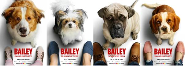 Bailey - Ein Hund kehrt zurück (2019) unsere Meinung zum Film 3