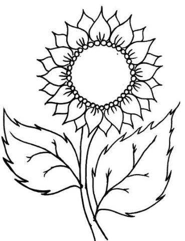 Download 15 Gambar Mewarnai Bunga Berbagai Jenis Mudah