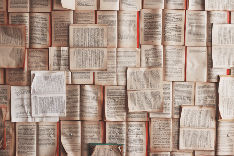 5 livres à lire pour écrire un bestseller