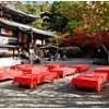 【今熊野観音寺】紅葉の見ごろとライトアップ!紅葉に包まれる参道と境内