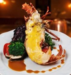header_1449034361_Lobster with BG