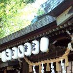 大宮八幡宮のパワースポットはご神木、夫婦で神社デートがおススメ