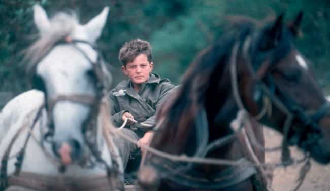 SPOMENKO NA VEČNOJ STRAŽI: Dokumentarni film o Malom Obiliću sa Ozrena 1