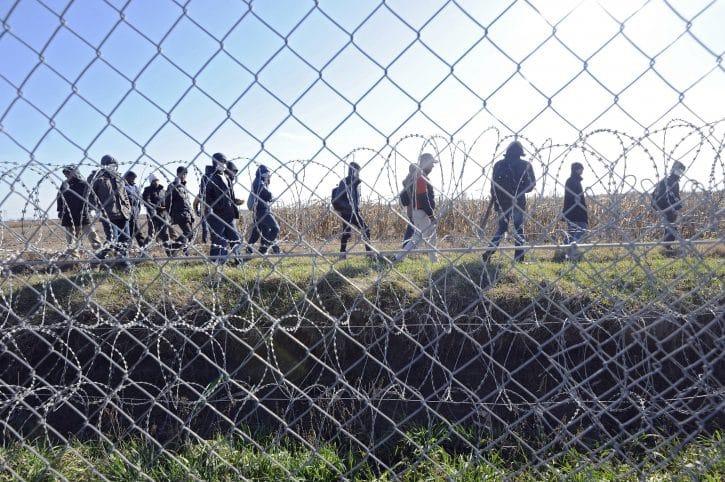 Migranti gađali patrolu kamenicama na mađarsko-srpskoj granici 1