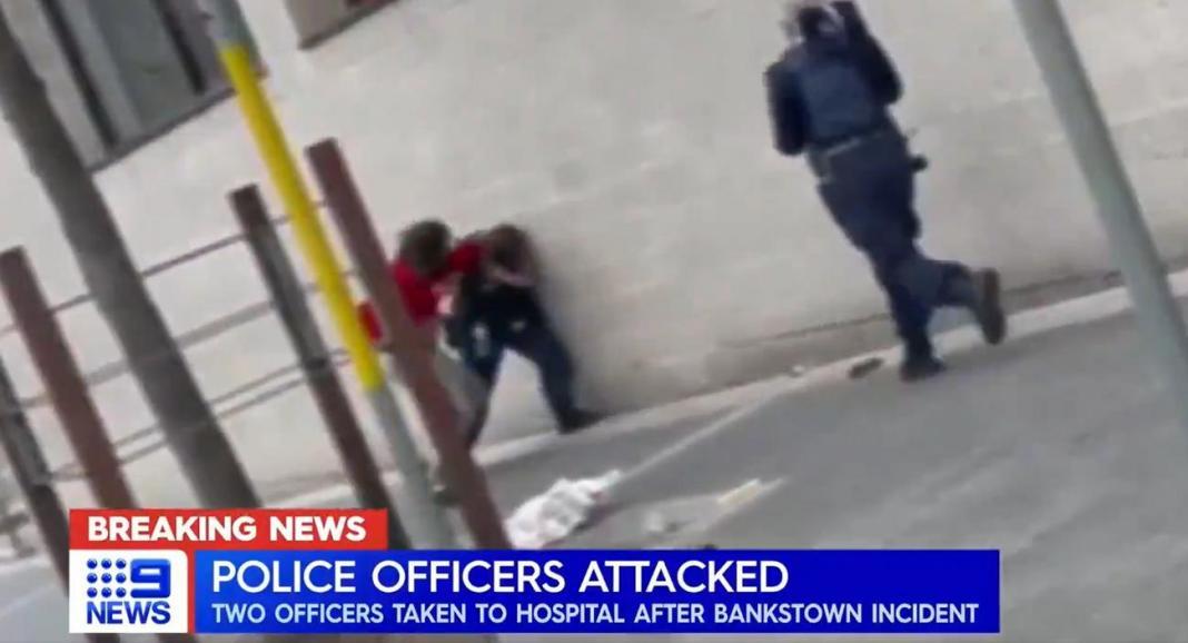 NAROD PUKAO: Pretukao policajku jer mu nije dala da izađe zbog karantina! (VIDEO) 1
