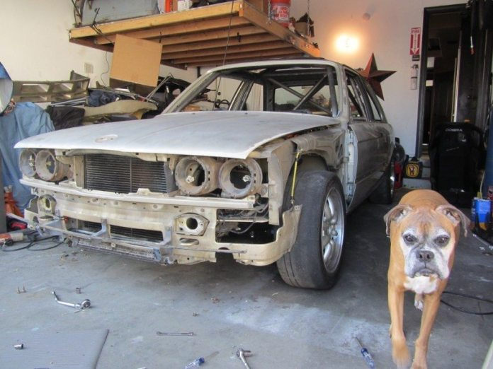 With the cage built, Strong took the time to strip the car for fresh paint. The dog was on hand for moral support.