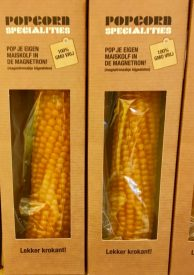 Popcornmais am Kolben (Holland).