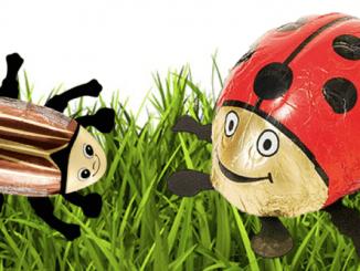 Maikäfer und Marienkäfer Schokoladenfiguren