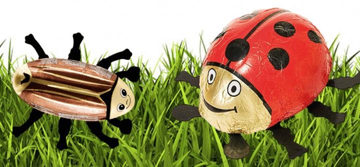 Originelle Schokoladen-Hohlfiguren – nicht nur Hasen und Nikoläuse