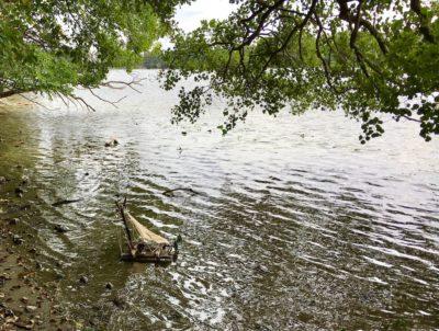 Kleines Bötchen im Ruppiner See. Oliver Numrich