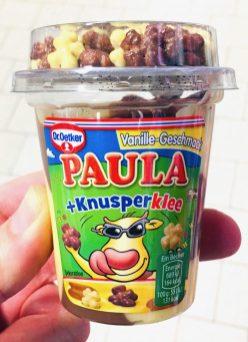 DrOetker Paula Vanille mit Knusperklee Pudding