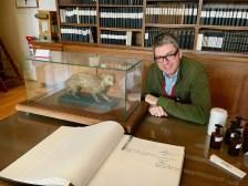 Naschkater mit Zibetkatze in der Bell-Bibliothek