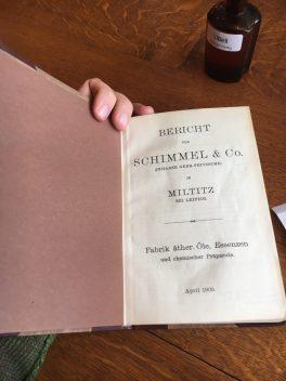"""Abbildung """"Schimmel-Bericht"""""""