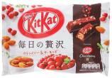 Nestlé KitKat Chocolatory Mandel-Cranberry-Streusel