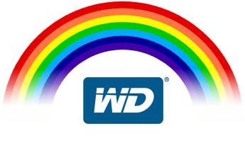 WD Red vs WD Gold vs WD Purple vs WD Black - WD Hard Drive