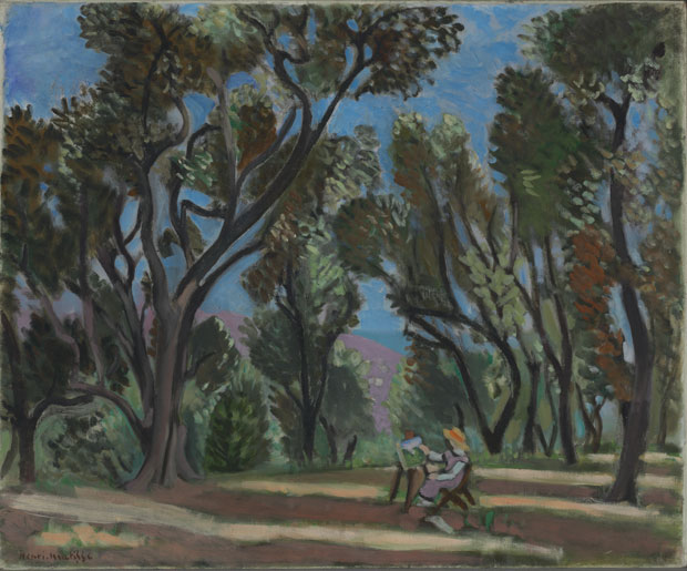 Image result for matisse painter in the olive grove