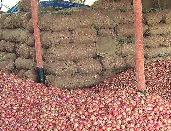 Malegaon onion merchant missing Bangladesh Crores onion purchases stuck, todays onion prices down rapidly 800 rs, onion,laslagoan, kanda,aaj cha kanda bhaav, nashik kanda, onion price, nashik bazar samiti, लासलगाव आजचा कांदा बाजार भाव आज बाजारपेठ, कांदा बाजार समिती नाशिक पिंपळगाव निफाड मनमाड चांदवड कळवण गिरणारे kanda bajar bhav nashik today कांदा मार्केट, kanda market .com